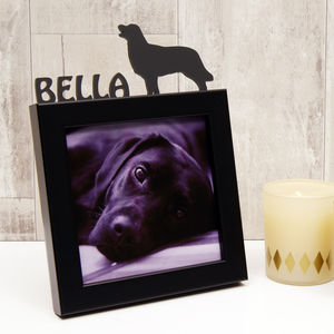 Personalised Dog Mini Photo Frame