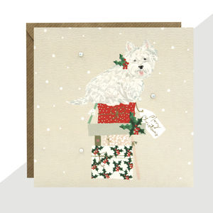 'Westie' Christmas Card Pack Of Five Or Single