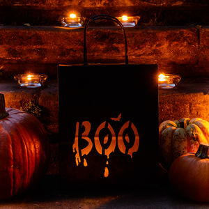 Boo Halloween Paper Lantern Bags, Party Decoration