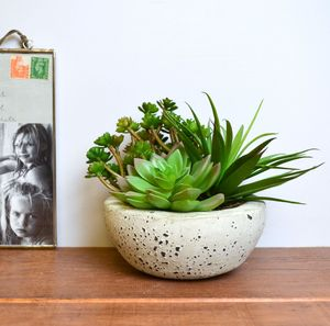 Faux Succulent Garden Bowl - home accessories