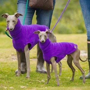 Fleecy Hound Jumper - dogs