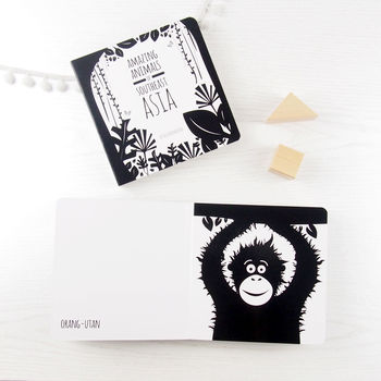Amazing Animals Of Southeast Asia Monochrome Board Book