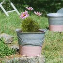Set Of Two Rose Pink Dipped Zinc Planter Buckets