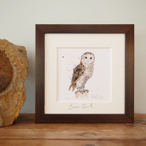 Barn Owl, Limited Edition Print - limited edition art