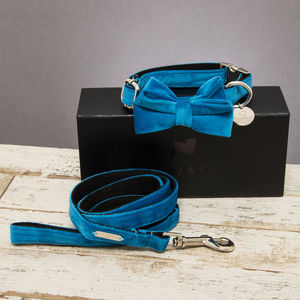 The Constantine Velvet Dog Collar Bow Tie And Lead Set - new in pets