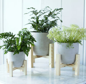 Concrete Planter With Wooden Stand