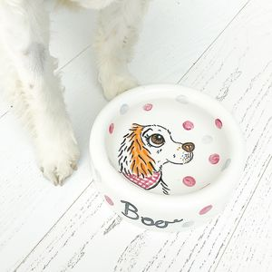 Personalised Dog Ceramic Water Bowl - food, feeding & treats