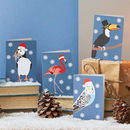 Tropical Bird Christmas Card Set