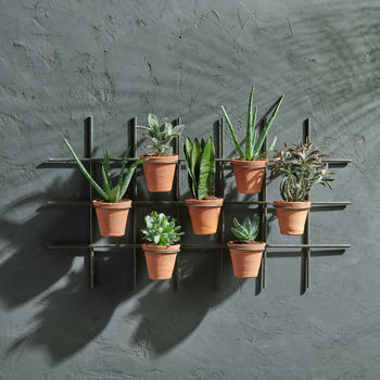 Terracotta Wall Hung Planter