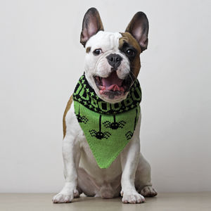 Knitted Boo Bandana - dogs