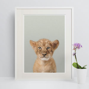 Nursery Decor Peekaboo Lion Cub Animal Print - animals & wildlife