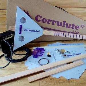 Make Your Own Electric Stringed Instrument Kit - music-lover