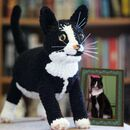 Personalised Crocheted Cuddly Toy Of Your Cat