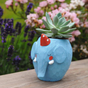 Elephant Planter With A Succulent - pots & planters
