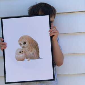 Illustrated Children's Wall Art Print Owl And Owlet