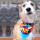 Personalised Superhero Dog Bandana Collar