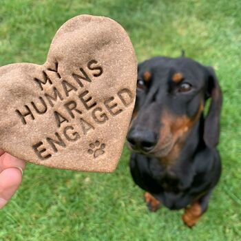 'My Humans Are Engaged' Dog Biscuits Engagement Gift
