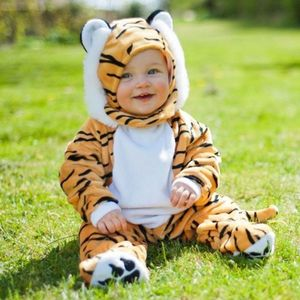 Tiger Baby Dressing Up Costume 3 Months+ - fancy dress for babies & children