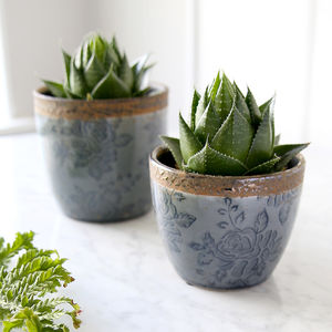 Blue Rose Plant Pot
