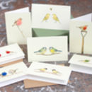 Boxed Collection Of Small Bird Gift Cards