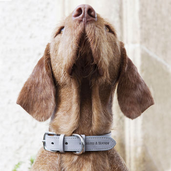 Grey Leather Dog Collar And Lead