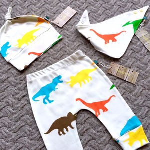 Dinosaur Organic Gift Set Leggings, Hat And Bib - clothing