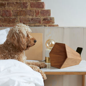 Wooden Speaker For iPhone - gifts for fathers