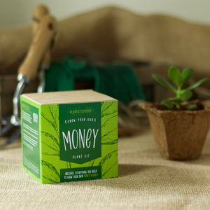 Grow Your Own Money Plant Kit - garden sale