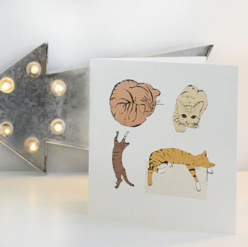 Colour Cats Greetings Card