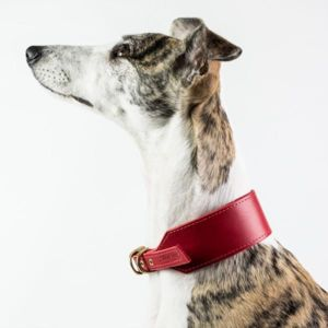 Finest British Leather Dog Collars