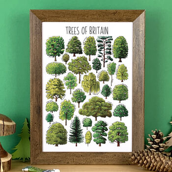 Trees Of Britain Wildlife Watercolour Print