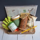 Children's Ladybird And Wildlife Gift Set