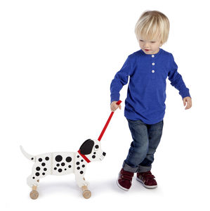 Pull Along Spotty Dog Or Black And White Cat