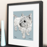 Personalised Pet Illustration - prints & art