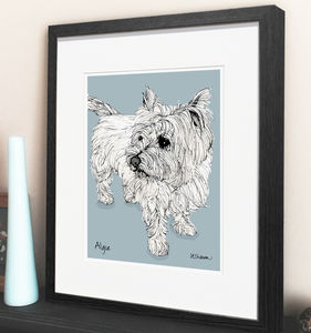 Personalised Pet Illustration - posters & prints