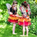 Butterfly Fairy Dressing Up: 3yrs+