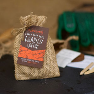 Grow Your Own Coffee Mini Plant Kit - shop by recipient