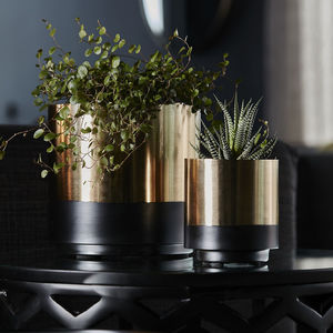Black And Gold Vase - new in home