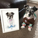 Personalised Pet Portrait Painting