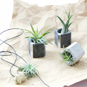 Concrete Silver Mini Air Plant Holder Set Of Three - flowers, plants & vases