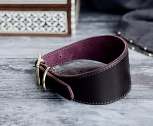 Vegetable Tanned Leather And Suede Hound Collar