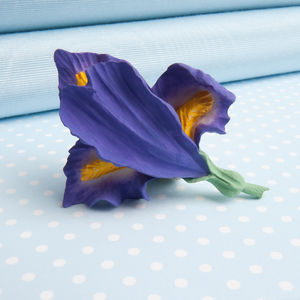 Iris Brooch In A Choice Of Natural Colours - pins & brooches