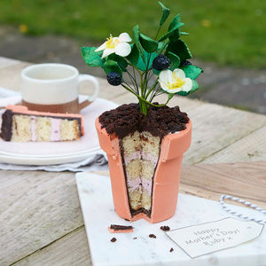 Edible Prickly Bramble Flour Pot Cake - gifts for mothers