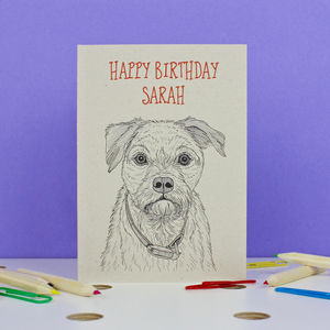 Border Terrier Birthday Card - summer sale