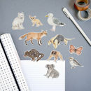 Animal Stickers Watercolour Illustrations