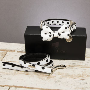 The Mayfair Spotted Dog Collar Bow Tie And Lead Set - pet collars