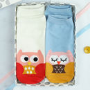 Little Owl Box Of Socks