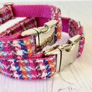 Firecracker Harris Tweed Dog Collar