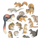 Squirrels Watercolour Print Unframed
