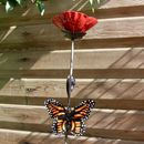 Red Poppy And Orange Butterfly